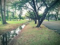 Asian Institute of Technology - playfield, side canal.jpg