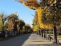 Augarten-Park 30.jpg