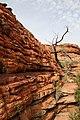 Australien, NT - Kings Canyon - panoramio - David Dreher (6).jpg