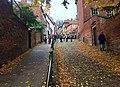 Autumn on Steep Hill.jpg