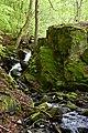 Axelstorp skogar creek.jpg