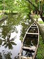Backwater kerala.jpg