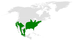 Baeolophus distribution map.png