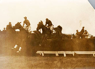 Baldoyle - Steeplechase for the Metropolitan Plate at Baldoyle Racecourse, 16 March 1923