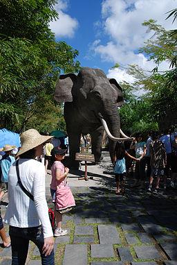 Bali Safari & Marine Park (2688927963)
