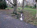 Ball Brook, Fog Lane Park - geograph.org.uk - 794156.jpg