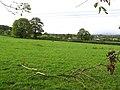 Ballyneill Beg Townland - geograph.org.uk - 267315.jpg