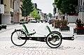 BamBuk Trike Tandem2.jpg