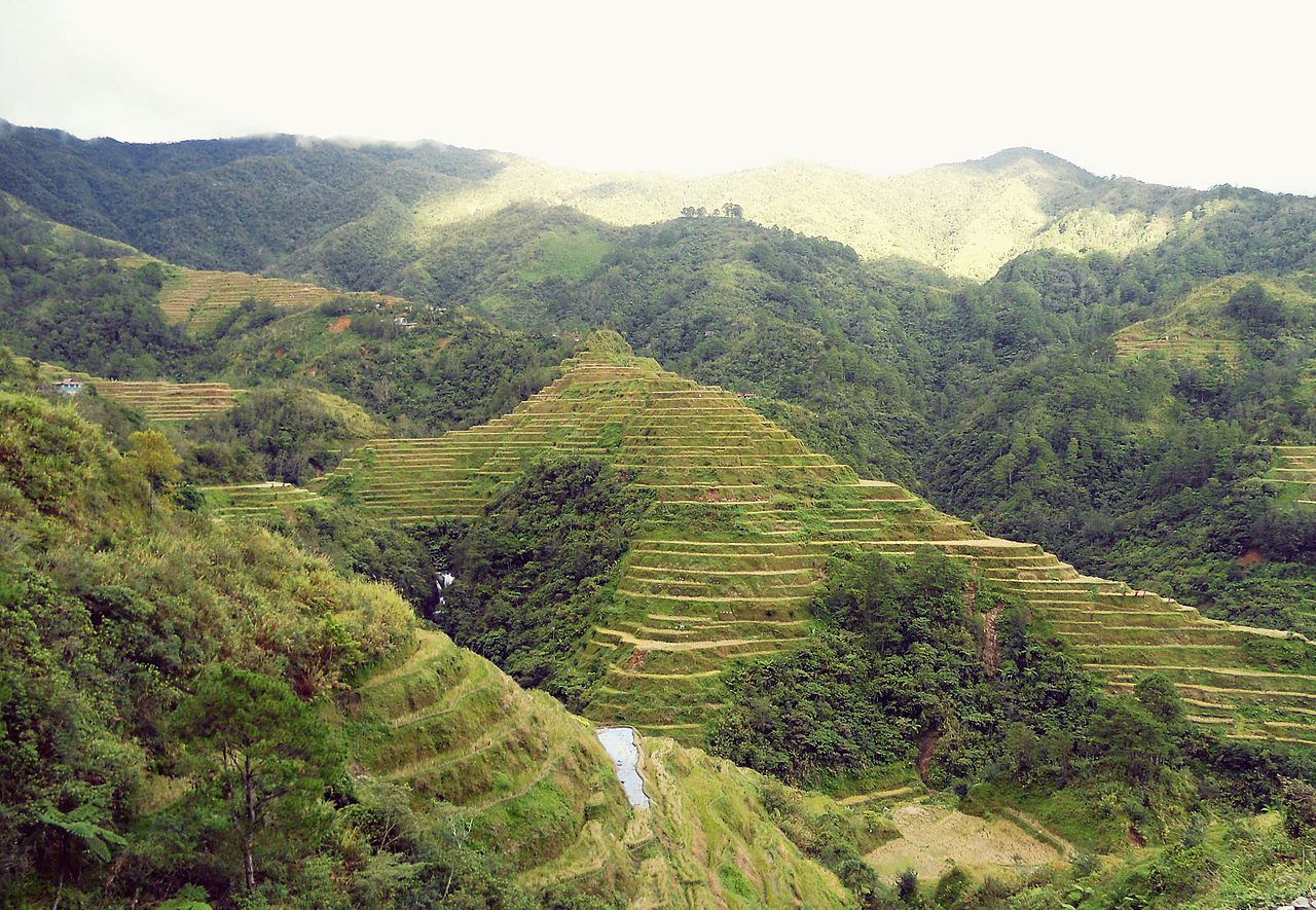 File banaue rice terraces ifugao jpg wikipedia for What are terraces