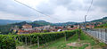 Barolo seen from north.JPG
