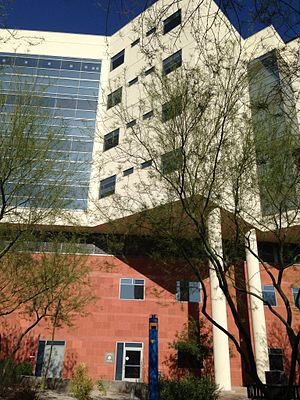 Barrow Neurological Institute - One of Two Neuroscience Towers at the BNI.