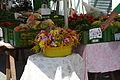 Bauernmarkt haus 0006 12-08-23.JPG