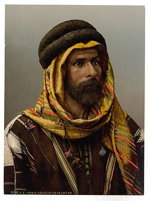 Palmyra (modern) - Bedouin Chief of Palmyra, Holy Land (i.e., Tadmur, Syria), between 1890 and 1900