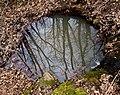 Begliktash puddle Бегликташ локва — копия.jpg