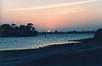 USA - Floryda, Clearwater, Akwarium Clearwater Mar