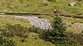 Bergtocht van Lavin door Val Lavinuoz naar Alp dÍmmez (2025m.) 11-09-2019. (actm.) 13.jpg
