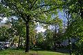 Berlin Schoeneberg Dorfanger 12.10.2011 10-00-25.JPG