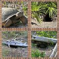 Better Holes & Gardens (8407610889).jpg