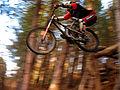 Bike drop.jpg