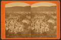 Bird's-eye view from Bear Mountain, by James Zellner.png