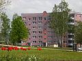 Birkenpark, Gera, 2009.jpg