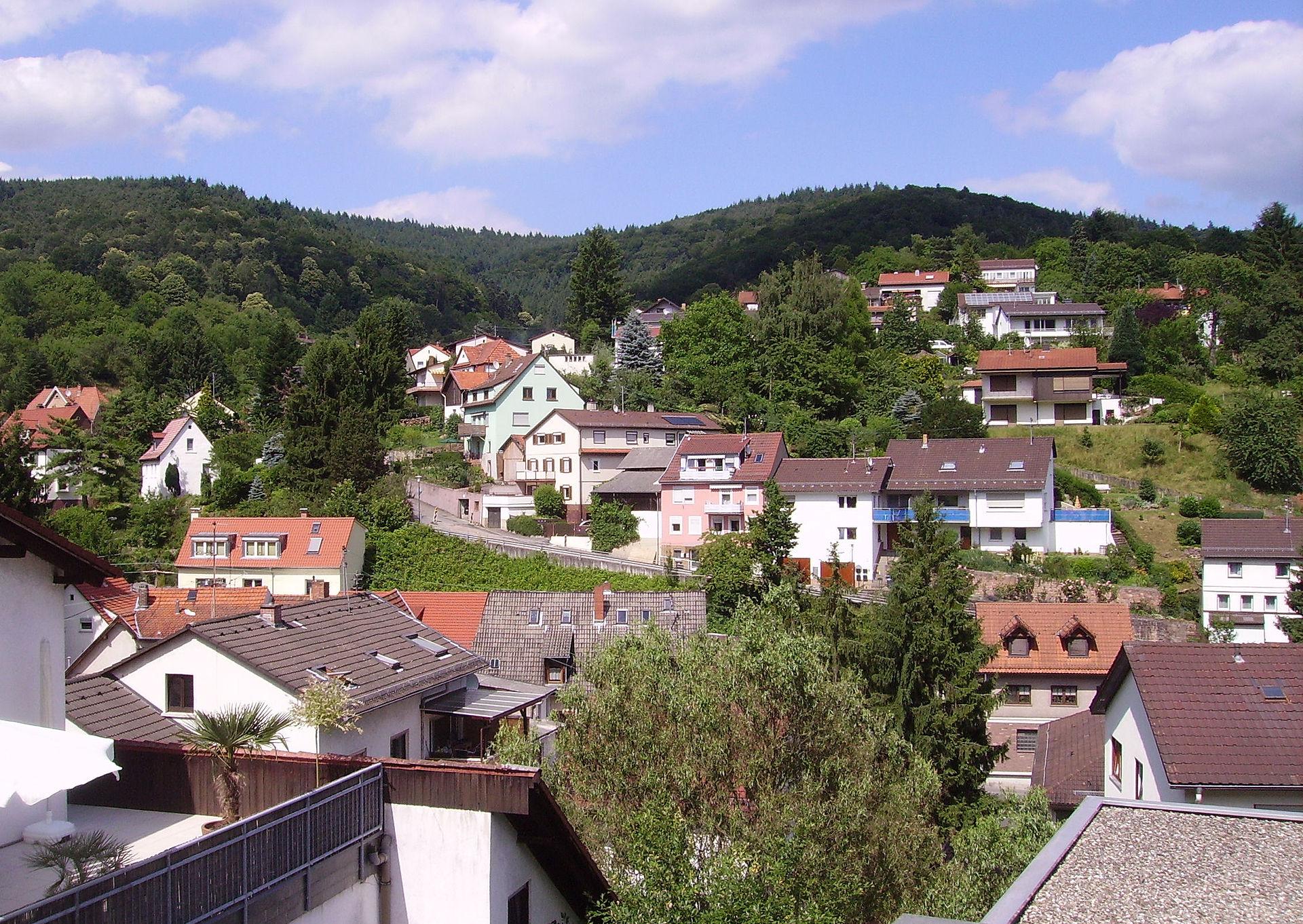Singles heidelberg germany
