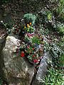 Blumeninsel in der Wald Abteilung auf dem Bergfriedhof Heidelberg .jpg