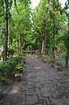 Bodhgaya (8716402813).jpg