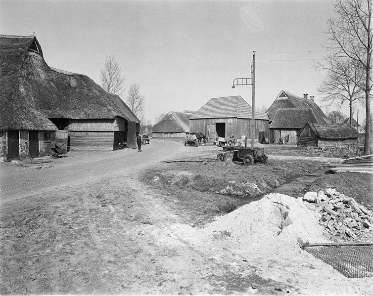 File:Boerderijgroep in het kernesdorp Orvelte, boerderijruimte in een zo geheten ringdorp gezien van de zuid-west zijde - Orvelte - 20177595 - RCE.jpg