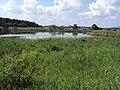 Bohatický rybník.jpg