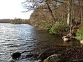 Bolam Lake on a mild Winter day - geograph.org.uk - 1533431.jpg