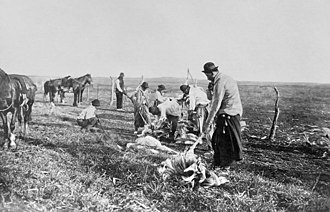 Bolas - A group of gauchos hunting rheas with bolas in La Pampa, Argentina.