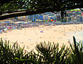 Bondi Beach - Festival of the Winds 2010.jpg