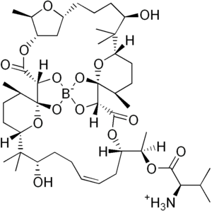 Boromycin - Image: Boromycin
