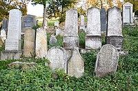 Boskovice-židovský-hřbitov2018f.jpg