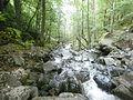 Boyana river 02.JPG