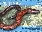 Brachymeles elerae 2011 stamp of the Philippines.jpg