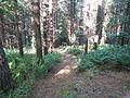 Braefoot Downhillers Alight Here - geograph.org.uk - 42786.jpg
