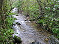 Bresnička reka 5.JPG