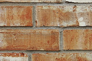 Bricks in a wall.