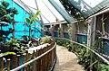 Bristol Aquarium.jpg