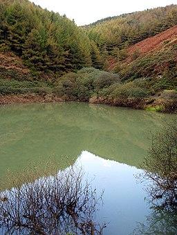 Brombil Reservoir - geograph.org.uk - 1548109