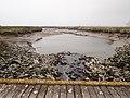 Brug - Verdronken Land van Saeftinghe.jpg