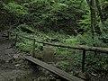 Bubovice-Srbsko - panoramio (123).jpg