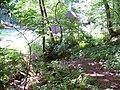 Bubovický potok u Kubrychtovy boudy.jpg