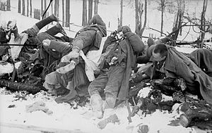 World War II casualties - Soviet soldiers killed during the Toropets–Kholm Offensive, January 1942. Officially, roughly 8.7 million Soviet soldiers died in the course of the war, including millions of POWs.