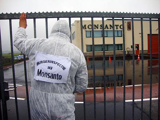 Burgerinspectie bij Monsanto Enkhuizen 2010-11-02 b