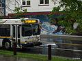 Bus 8170137.JPG