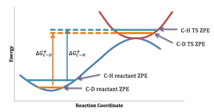 Kinetic isotope effect - ZPE energy differences and corresponding differences in the activation energies for the breaking of analogous C-H and C-D bonds