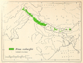 CL-24a Pinus roxburghii range map.png